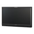 Sony LMD2341W