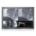 EIZO RadiForce LX300W