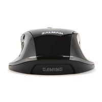 Zalman ZM-GM1